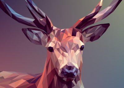 deer-3275594_1280